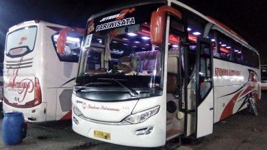 foto saungbus.com sewa bus pariwisata Jakarta