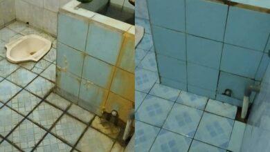cara membersihkan lumut kamar mandi